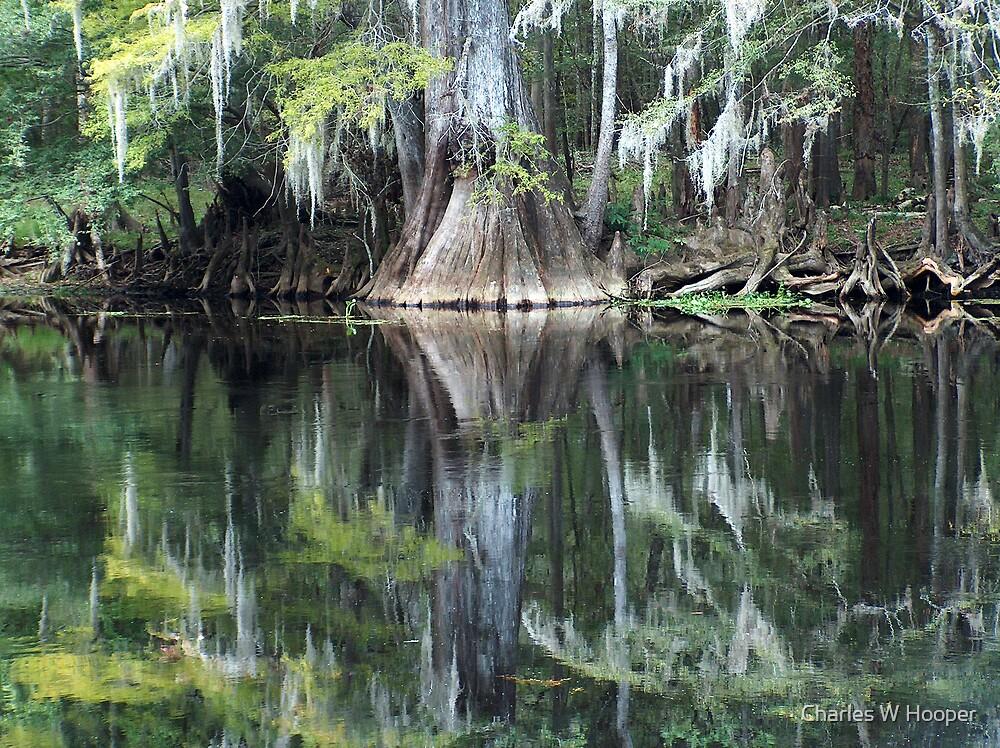 Ginny Springs Florida by Charles W Hooper