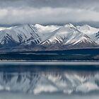 Lake Pukaki Reflections by Charles Kosina
