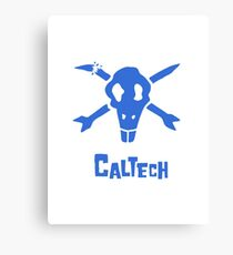 Caltech Bottlerocket (Blue) Canvas Print