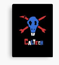 Caltech Bottlerocket (Red, White, & Blue) Canvas Print