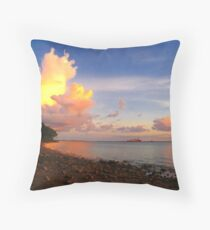 Darwin Shore Sunset Throw Pillow