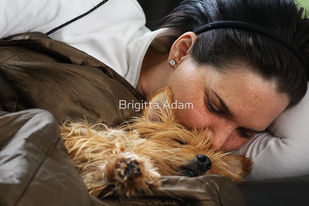 Afternoon Nap by Brigitta Adam