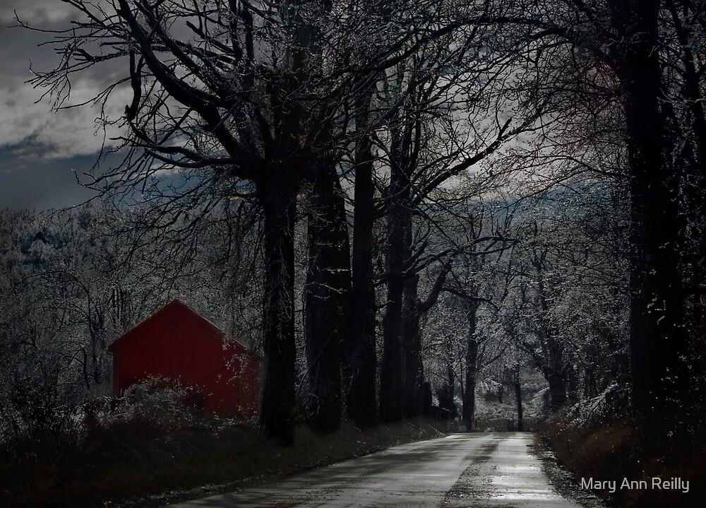 Barrett Road by Mary Ann Reilly