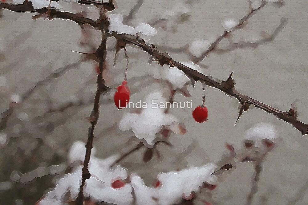Winter Berries by Linda Sannuti