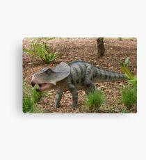Protoceratops andrewsi Canvas Print