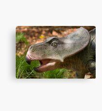 Protoceratops andrewsi profile Canvas Print