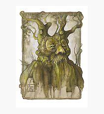 Treebeard Photographic Print