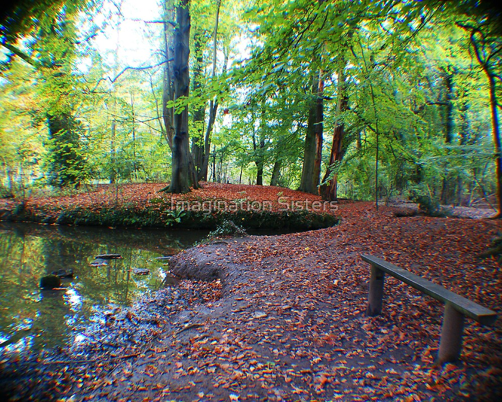 COOMBE ABBEY WOODS by tbailey