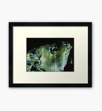 Venus subaqua Framed Print