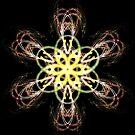 Fractal Fantastic Flower by Vitta