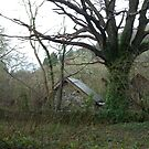Farmhouse and Barn_Betws-y-Coed_Wales_UK by Kay Cunningham