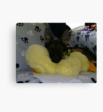 My Toy Duck Canvas Print