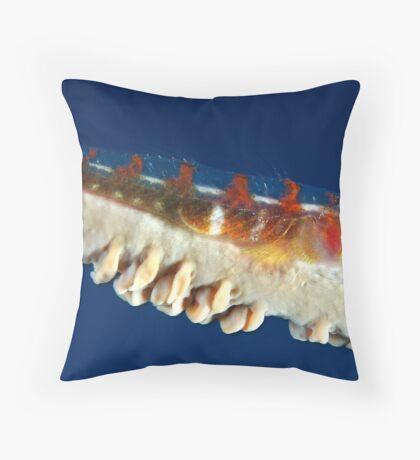 Seawhip Throw Pillow
