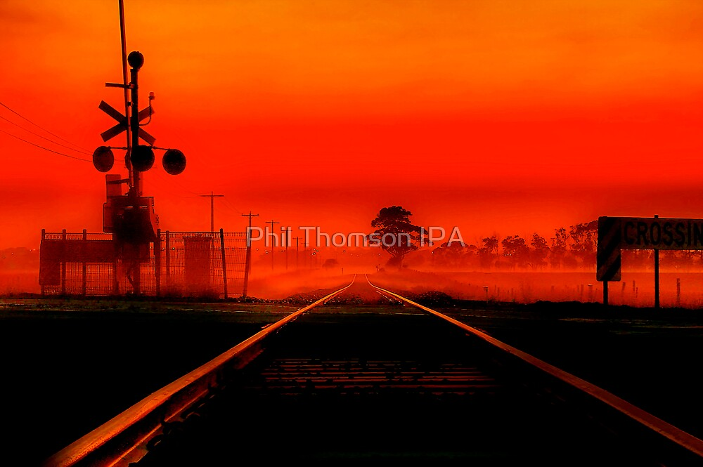 """""""Life's Line"""" by Phil Thomson IPA"""