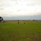 Antipodean Vistas by Elaine Stevenson