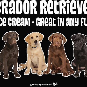 Lab Retrievers Great in any Flavor  by TMan74