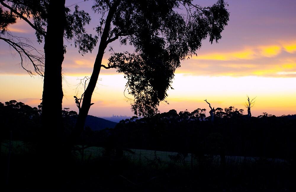 Sunset, Kinglake by Elaine Stevenson