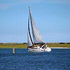 Sailing At Masonboro Island by Cynthia48