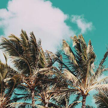 Palm Trees & Island Breeze by adventurlings