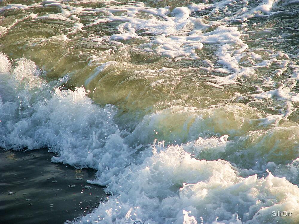 Sea foam by Gili Orr