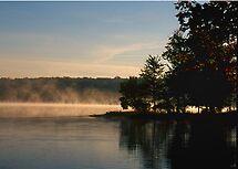 Trees, Fog, Lake Joseph by fauselr