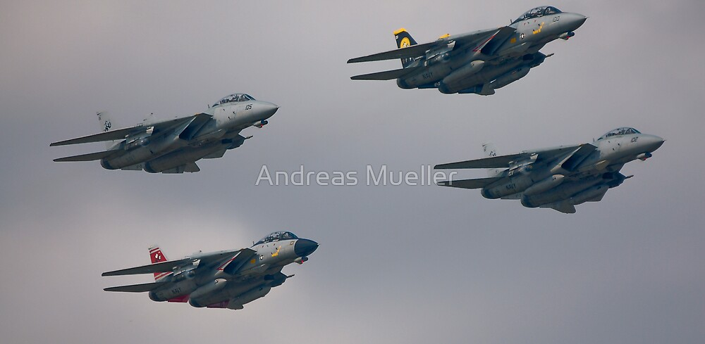 F-14D Tomcatters Last Flight  by Andreas Mueller