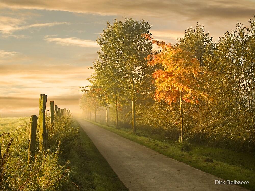 misty road by Dirk Delbaere