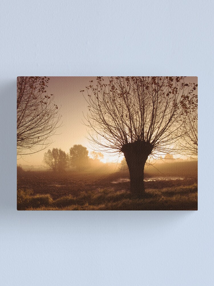 Alternate view of Willow Canvas Print