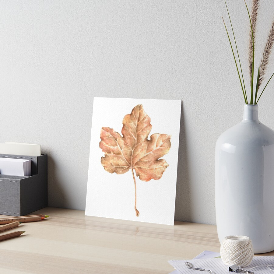 Maple leaf by Patrizia  Ambrosini