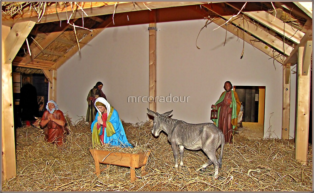 The nativity scene at the Cathedral by Malcolm Chant