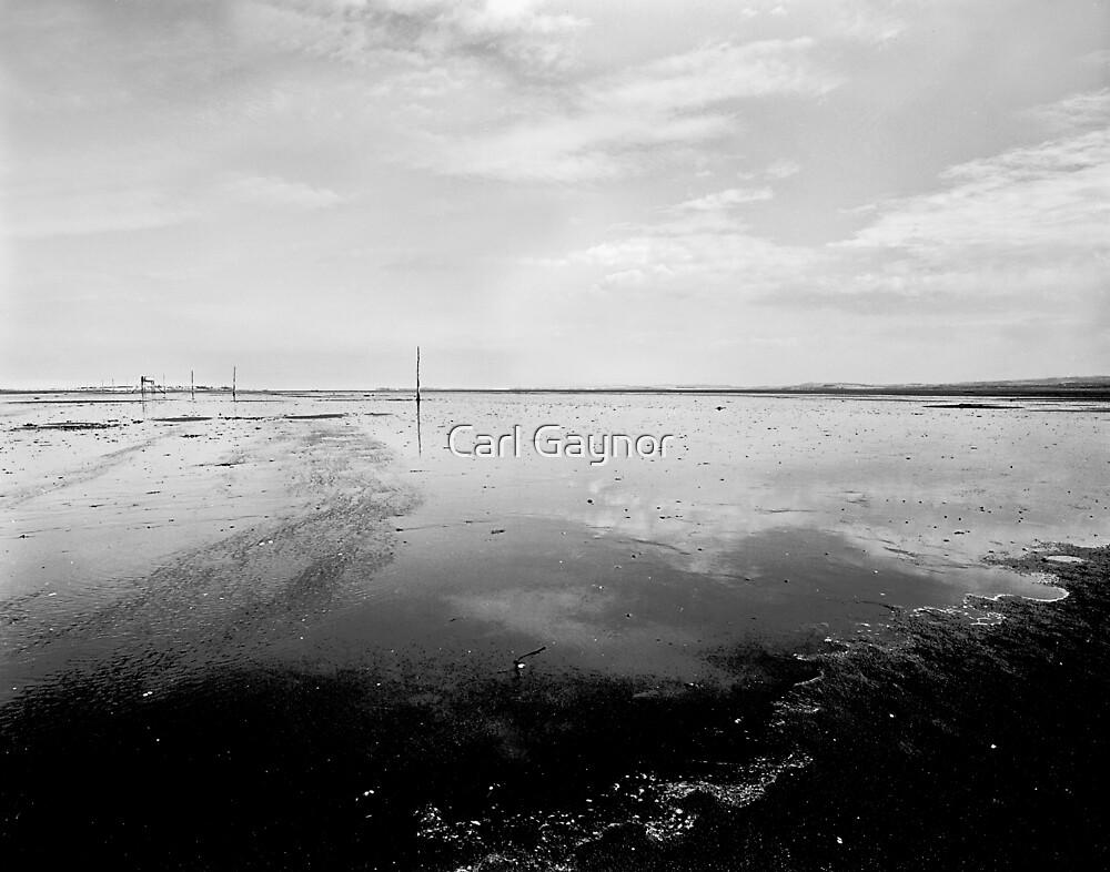Transition  by Carl Gaynor