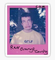 Rex Orange County Polaroid Sticker