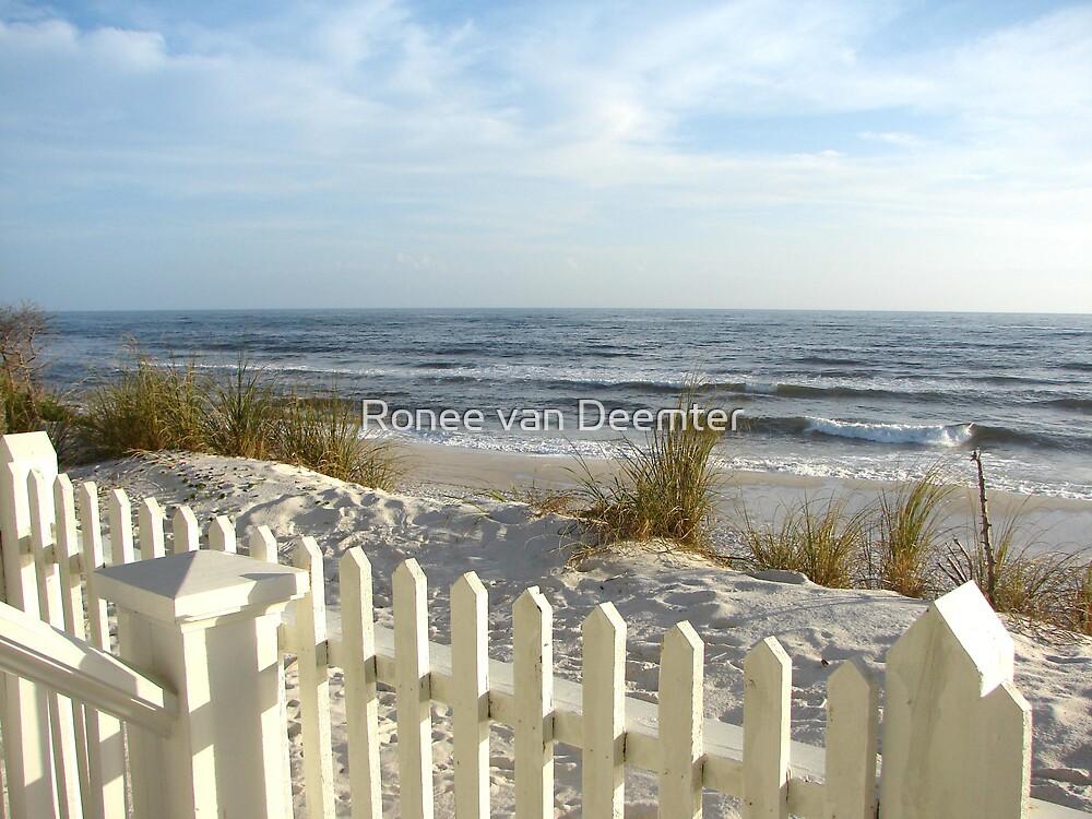 Fence on the beach by Ronee van Deemter