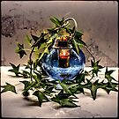 Still life with Liquidambar styraciflua by andreisky