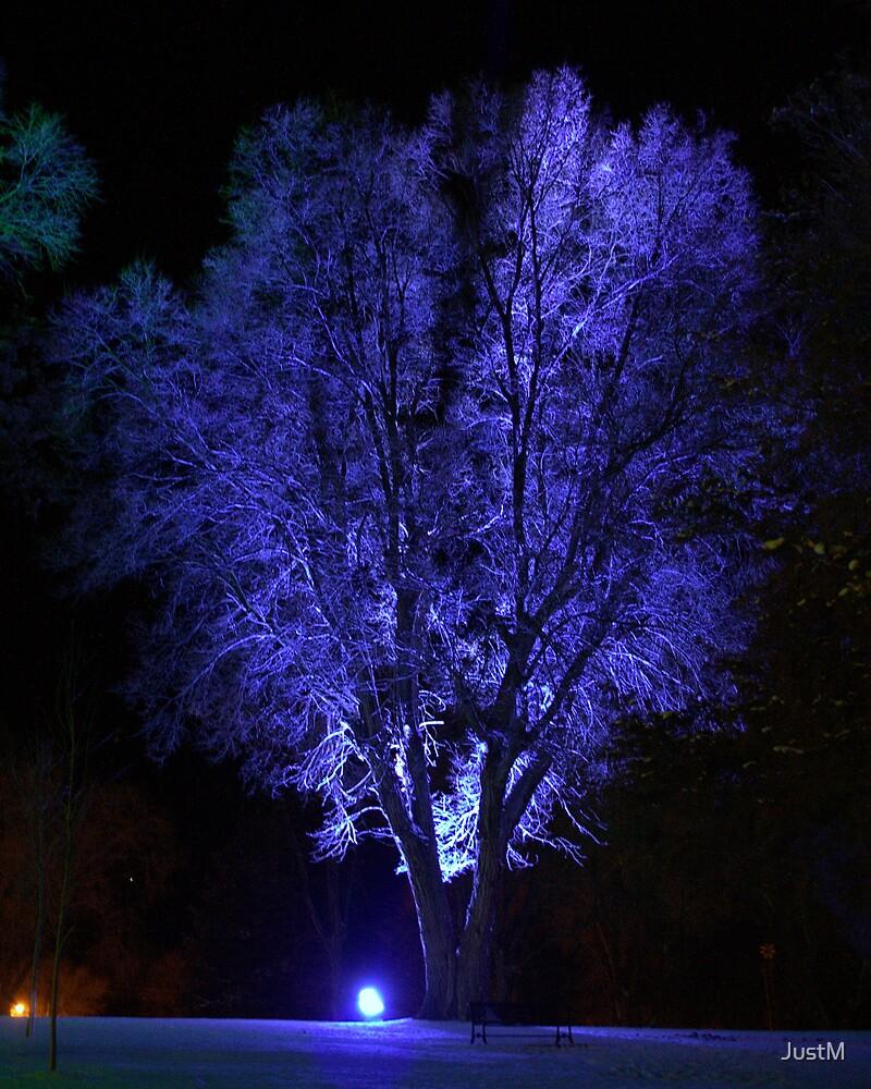 Winter Wonderland by JustM