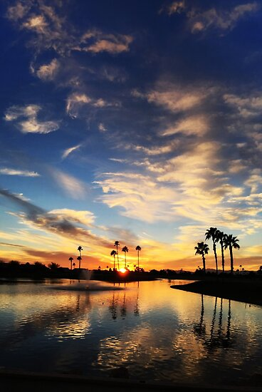 Arizona Sunset on the Pond Blue Sky by Mark A. Queen