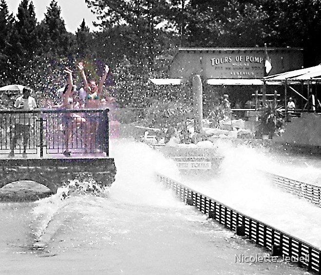 Busch Gardens by Nicolette Jewell
