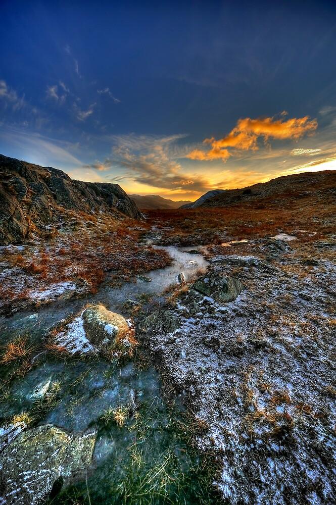 Frozen at Dusk by Owen Burke