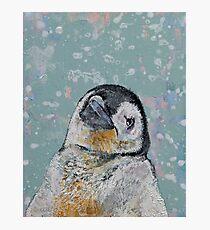 Baby Penguin Snowflakes Photographic Print