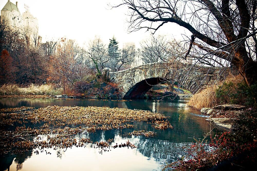 Central Park by dapen