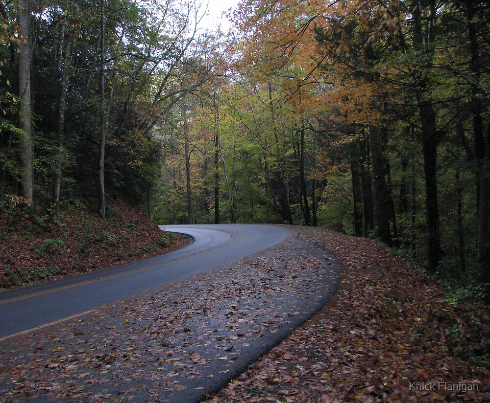 Winding Road by Knick Flanigan