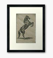Rearing Stallion Framed Print