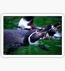 Penguin Swin Sticker