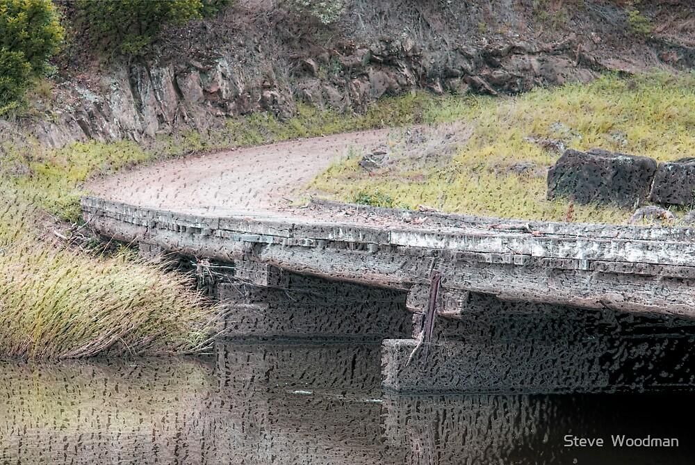 The Bridge by Steve  Woodman