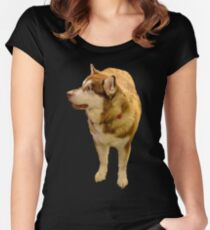 Malamute 01 Women's Fitted Scoop T-Shirt