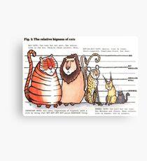 Cat bigness Metal Print