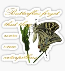 Butterflies Forget They Were Once Caterpillars Proverbial Text Sticker
