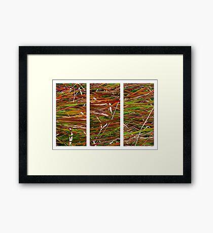 Wild Grass Triptych Framed Print