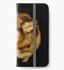 Malamute 02 iPhone Wallet/Case/Skin