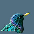 Starling by Dave  Knowles